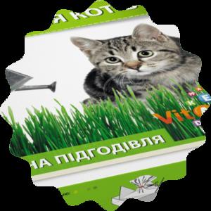 Трава для котов